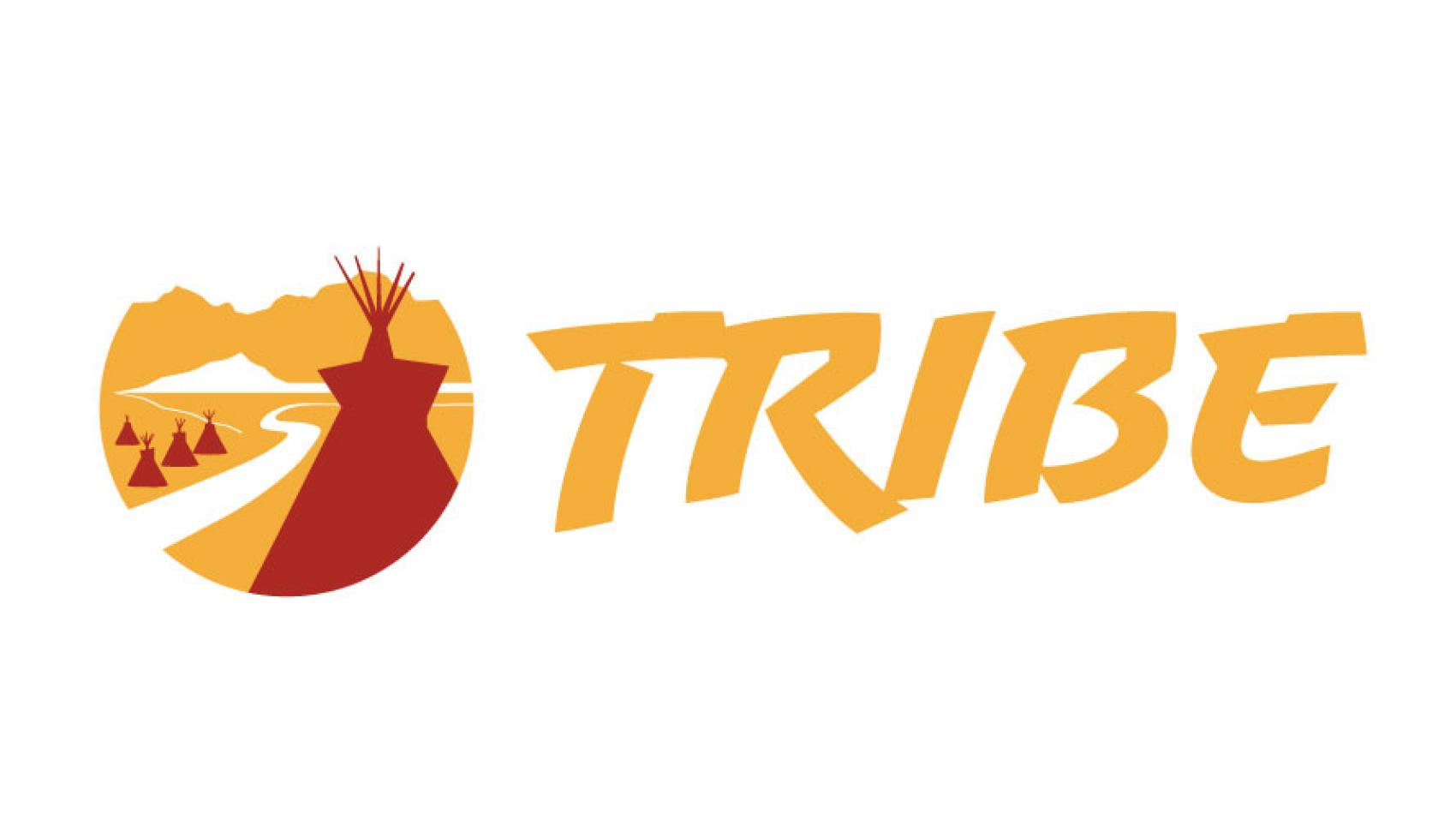 Tulare High School Softball Logo