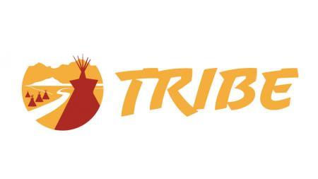 Tulare High School Softball Logo