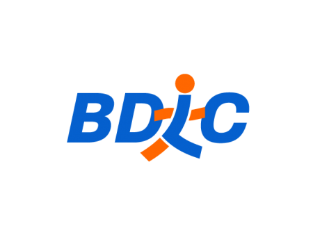 BDLC Research & Consulting Secondary Logo